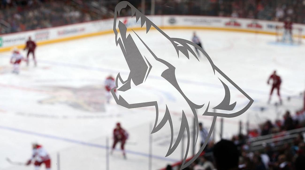 Coyotes hire Dawn Braid as NHL's first full-time female coach