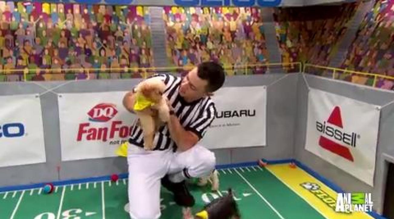 Puppy Bowl goal