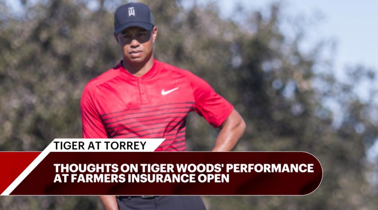 tiger woods fan gets earful from angry gallery  volunteers