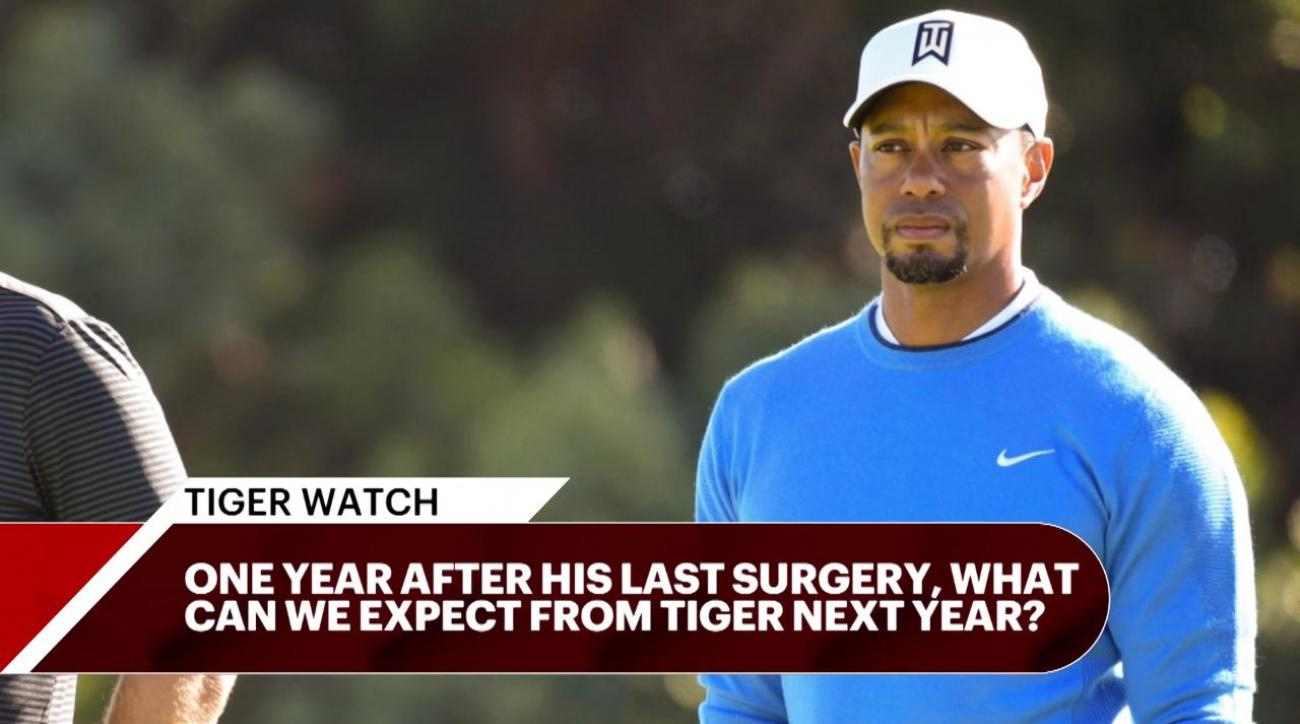 Tiger Woods commits to Players Championship and Wells Fargo