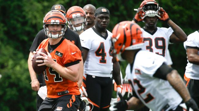 Cincinnati Bengals QB Andy Dalton headlines The Minicamp All-Hype team.