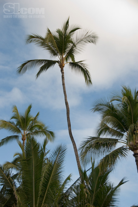 08_hawaii_14_Gallery