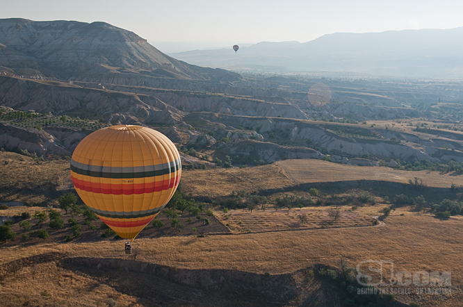 09_turkey-balloon_11_Issue