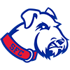 St. Francis BrooklynTerriers