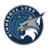 MinnesotaLynx