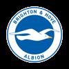 Brighton & Hove AlbionBrighton & Hove Albion