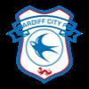 Cardiff CityCardiff City
